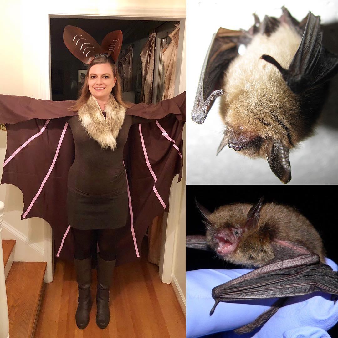 nature halloween costume