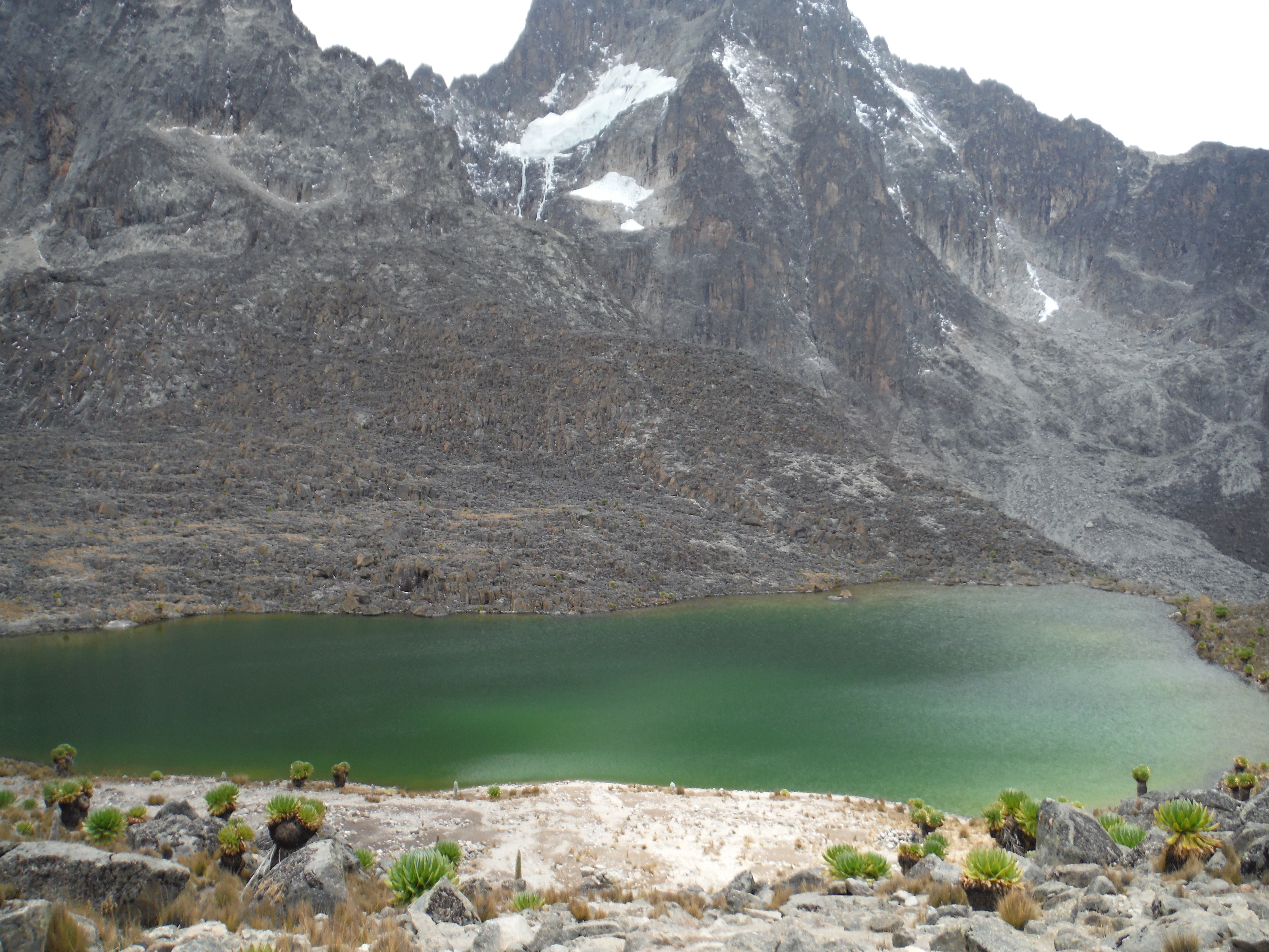 Mount Kenya expedition