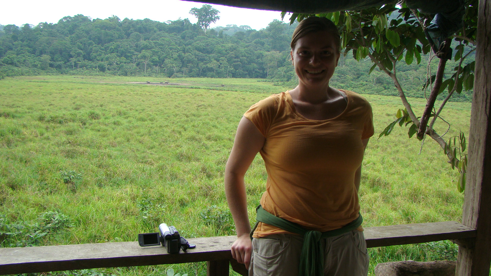 Scientist with forest elephants