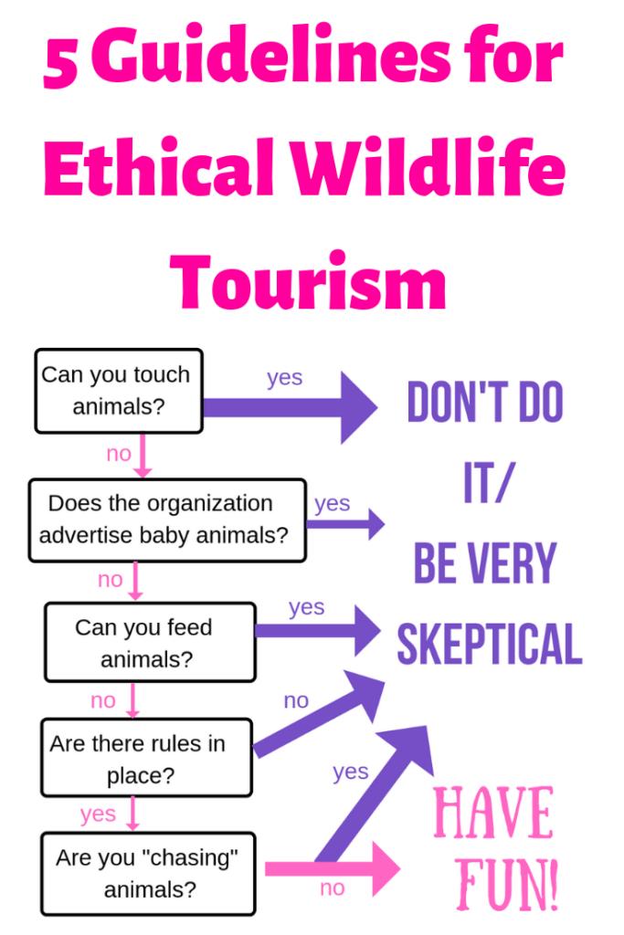 Ethical Wildlife Tourism
