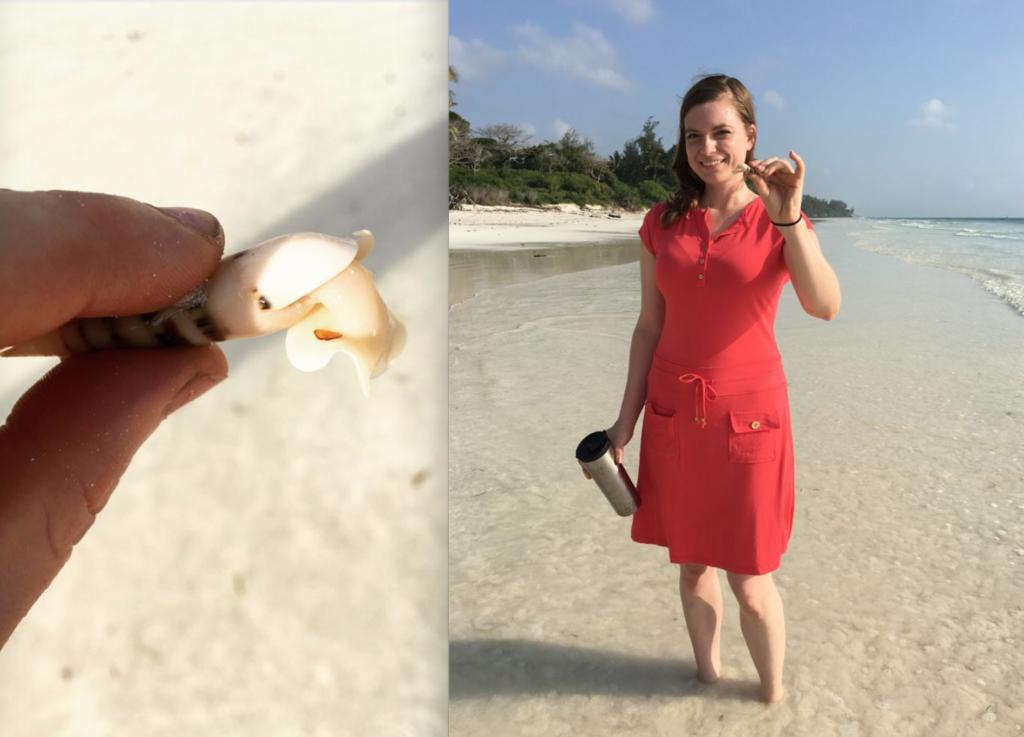 sustainable beach trip