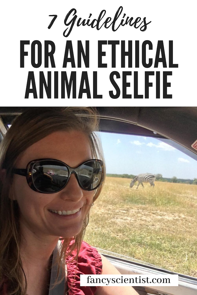 7 Guidelines for an Ethical Animal Selfie
