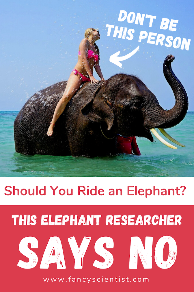 Don't ride elephants