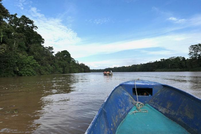 Gorgeous views of the Kinabatangan River.