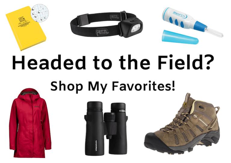 field work favorites