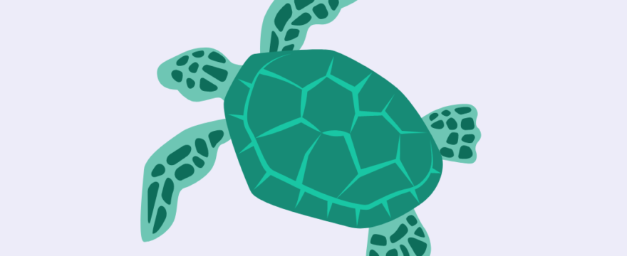 Sea turtles and straws with Christine Figgener